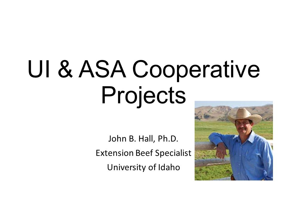 UI & ASA Cooperative Projects John B. Hall, Ph.D. Extension Beef Specialist University of Idaho