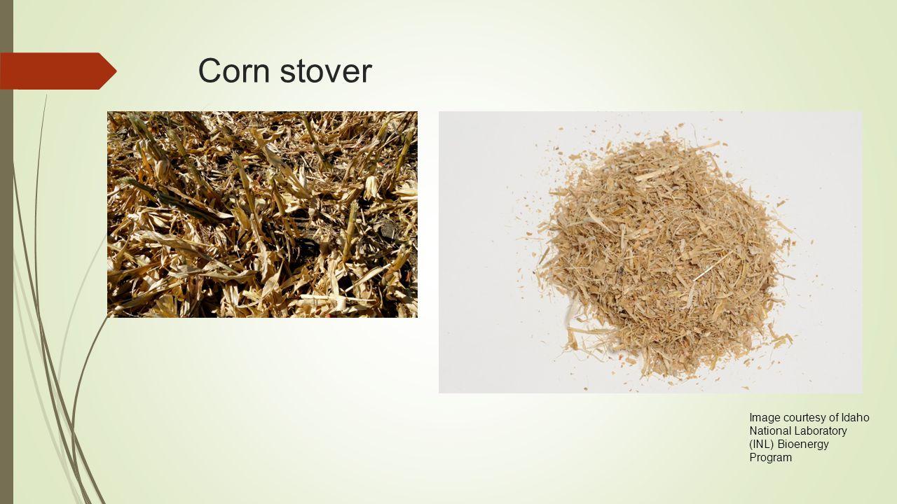 Corn stover Image courtesy of Idaho National Laboratory (INL) Bioenergy Program