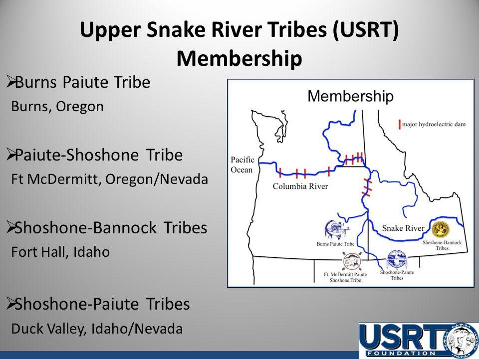 Upper Snake River Tribes (USRT) Membership  Burns Paiute Tribe Burns, Oregon  Paiute-Shoshone Tribe Ft McDermitt, Oregon/Nevada  Shoshone-Bannock T