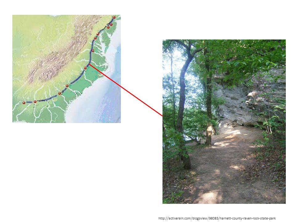 http://activerain.com/blogsview/98083/harnett-county-raven-rock-state-park