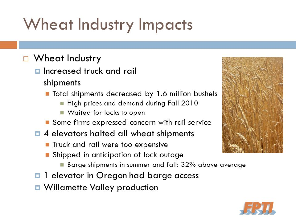 Wheat Industry Impacts  Wheat Industry  Increased truck and rail shipments Total shipments decreased by 1.6 million bushels High prices and demand during Fall 2010 Waited for locks to open Some firms expressed concern with rail service  4 elevators halted all wheat shipments Truck and rail were too expensive Shipped in anticipation of lock outage Barge shipments in summer and fall: 32% above average  1 elevator in Oregon had barge access  Willamette Valley production