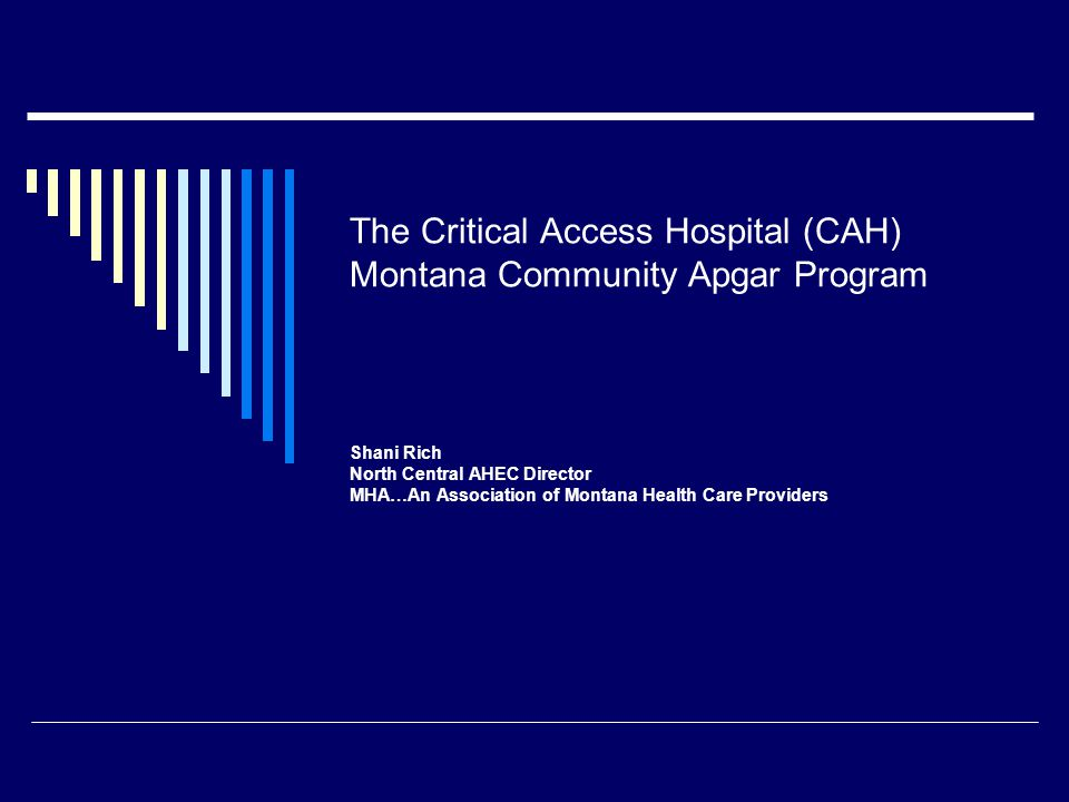 The Critical Access Hospital (CAH) Montana Community Apgar Program Shani Rich North Central AHEC Director MHA…An Association of Montana Health Care Pr