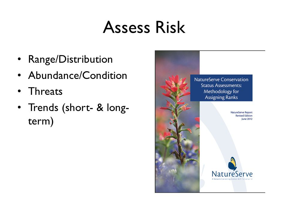 Assess Risk Range/Distribution Abundance/Condition Threats Trends (short- & long- term)