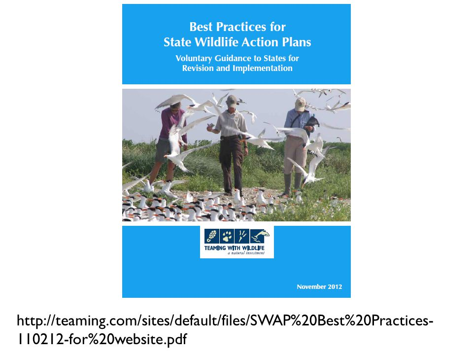 http://teaming.com/sites/default/files/SWAP%20Best%20Practices- 110212-for%20website.pdf