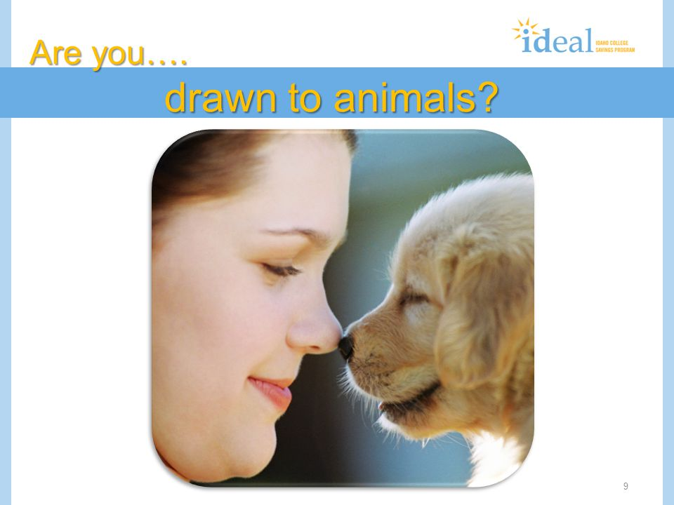 9 Are you…. drawn to animals?
