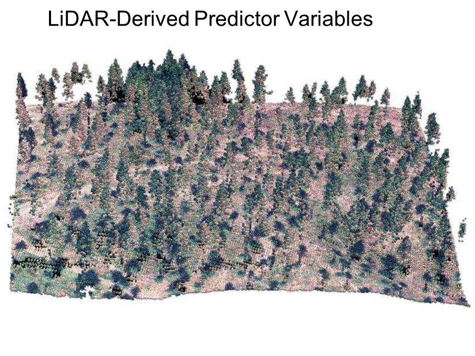 LiDAR-Derived Predictor Variables
