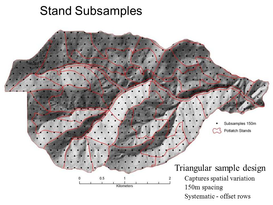 Stand Subsamples Triangular sample design Captures spatial variation 150m spacing Systematic - offset rows