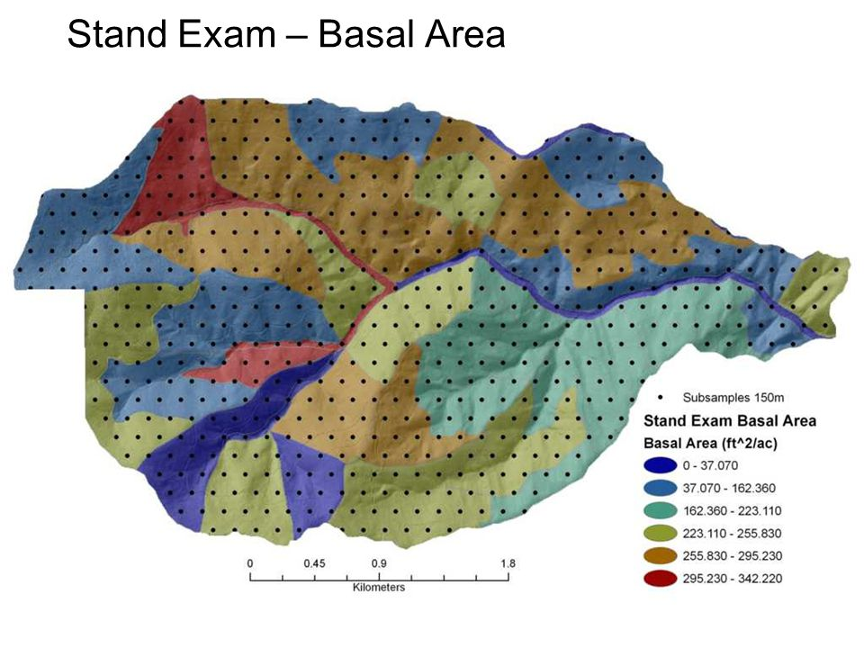 Stand Exam – Basal Area