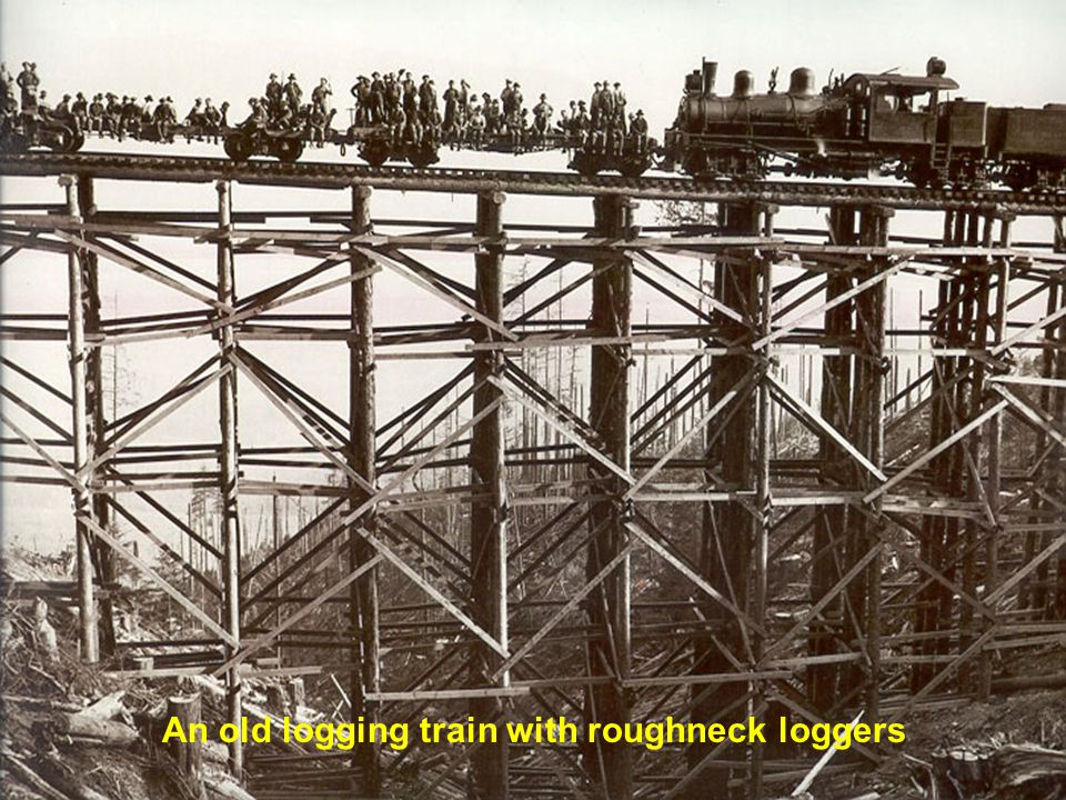 An old logging train with roughneck loggers