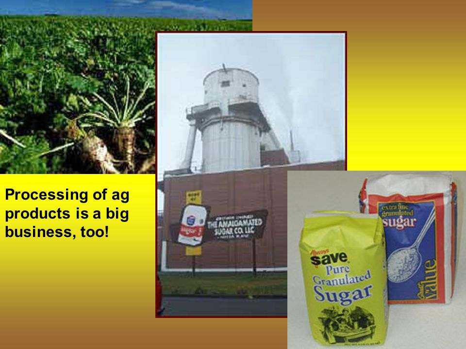 Processing of ag products is a big business, too!