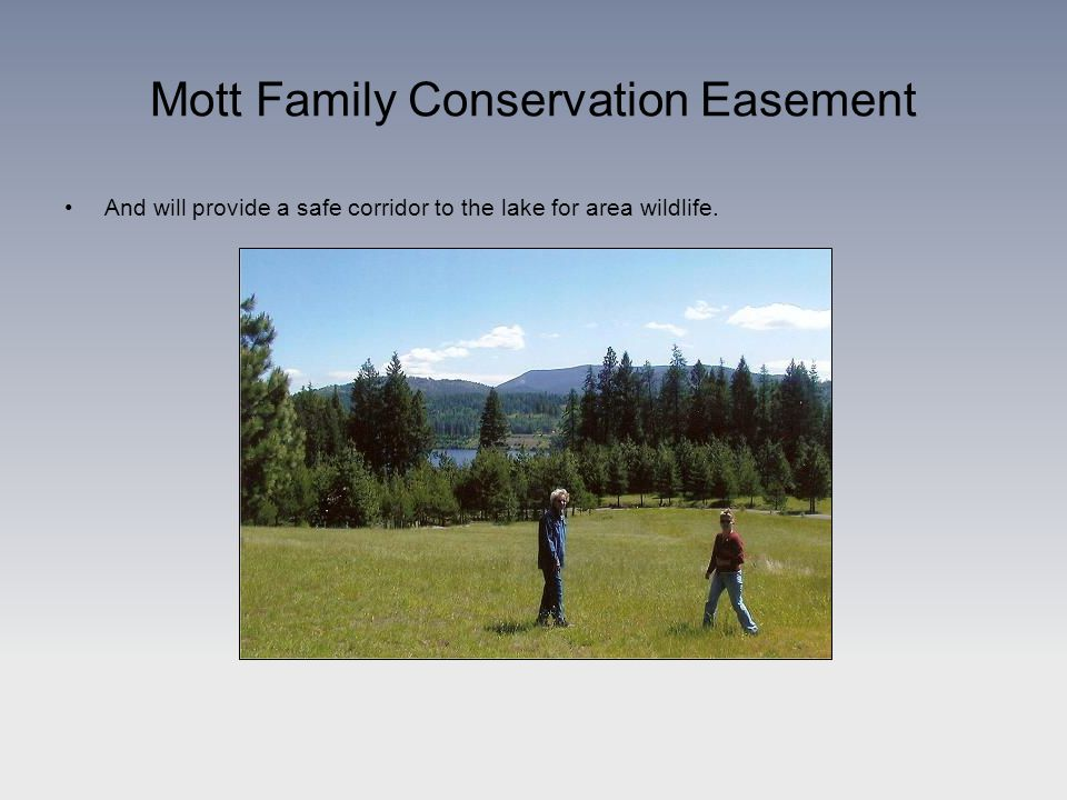 Mott Family Conservation Easement And will provide a safe corridor to the lake for area wildlife.