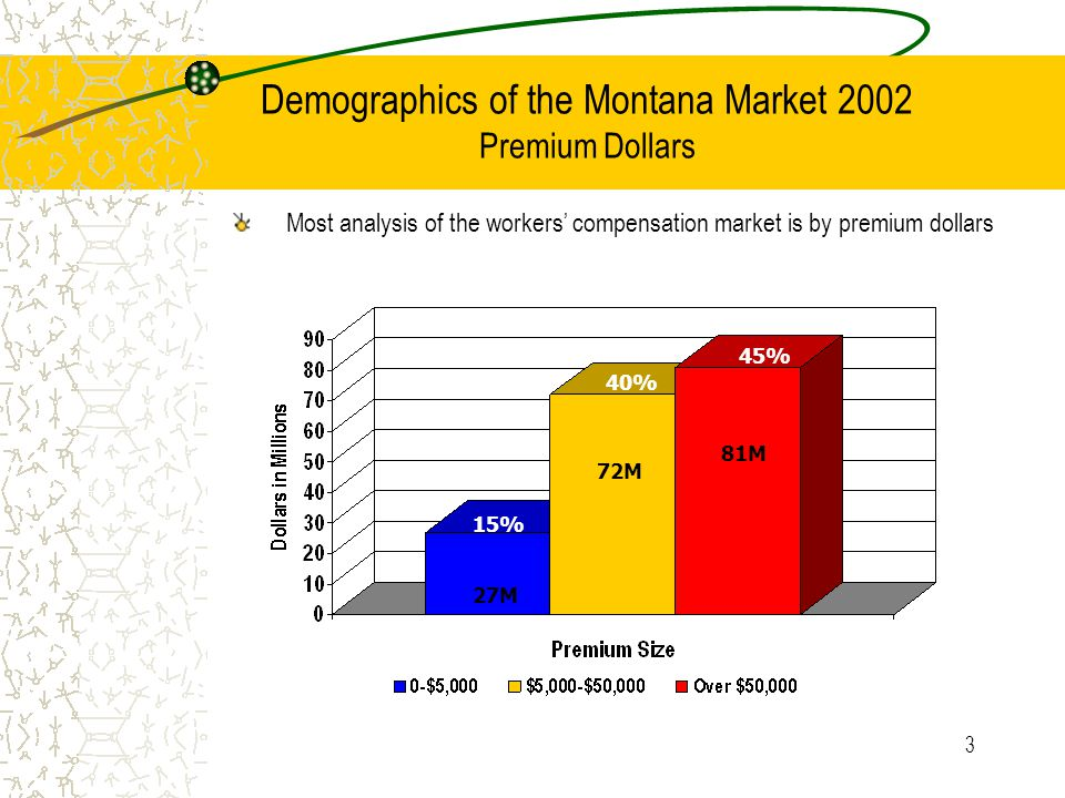4 Demographics of the Montana Market 2002 Policy Count 16.3% 82% 1.7%
