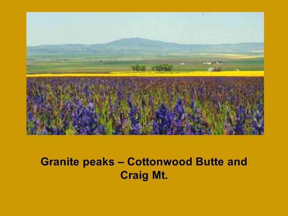 Granite peaks – Cottonwood Butte and Craig Mt.