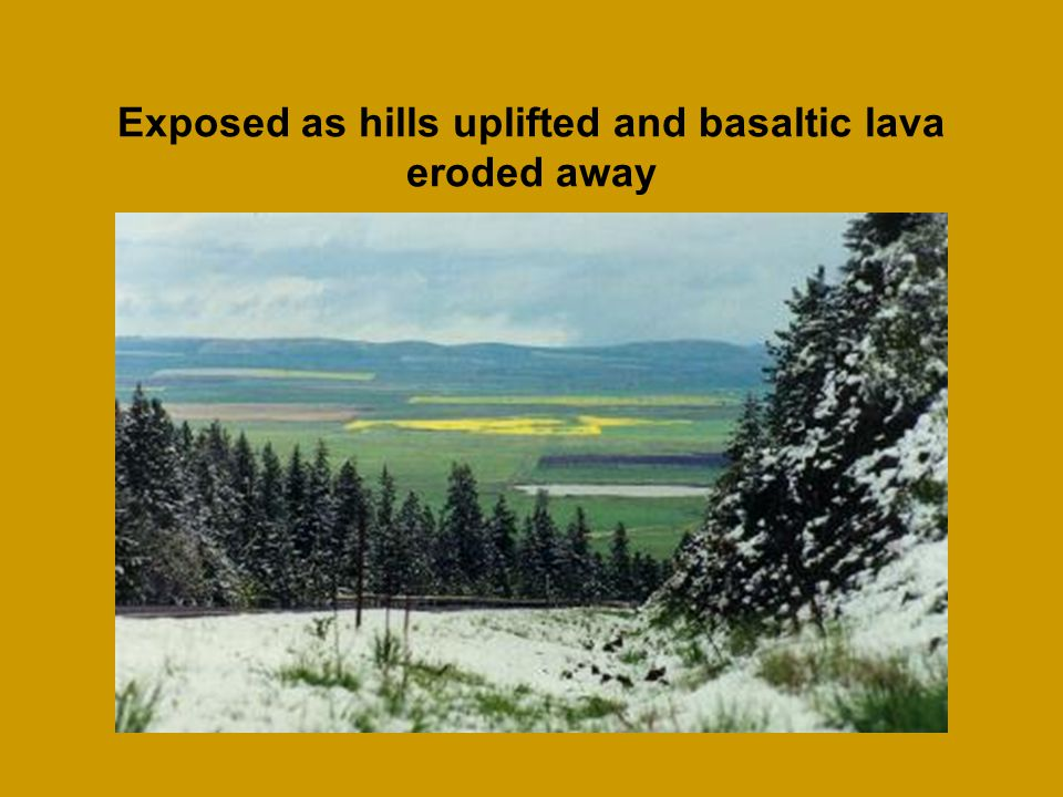 Exposed as hills uplifted and basaltic lava eroded away