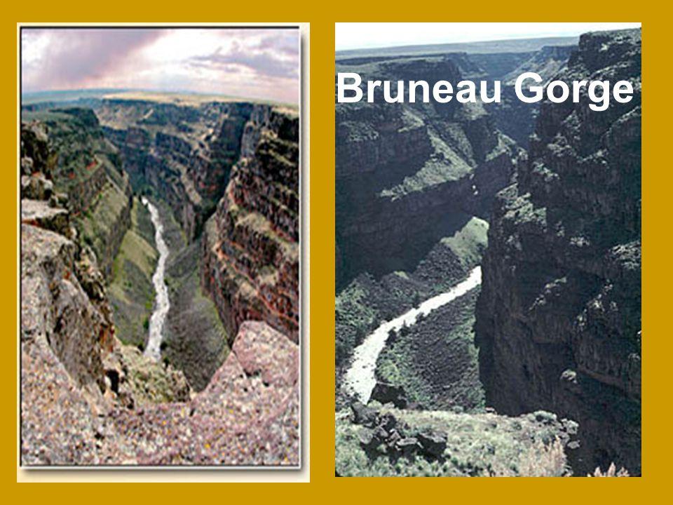 Bruneau Gorge