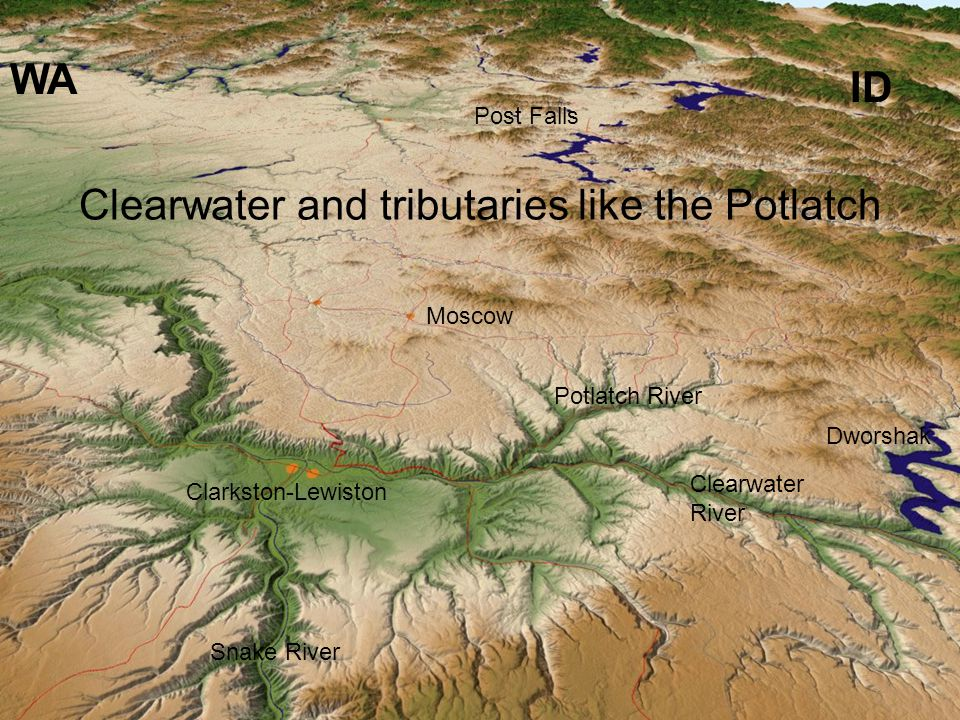 Clarkston-Lewiston Moscow Post Falls Snake River Clearwater River WA ID Potlatch River Dworshak Clearwater and tributaries like the Potlatch
