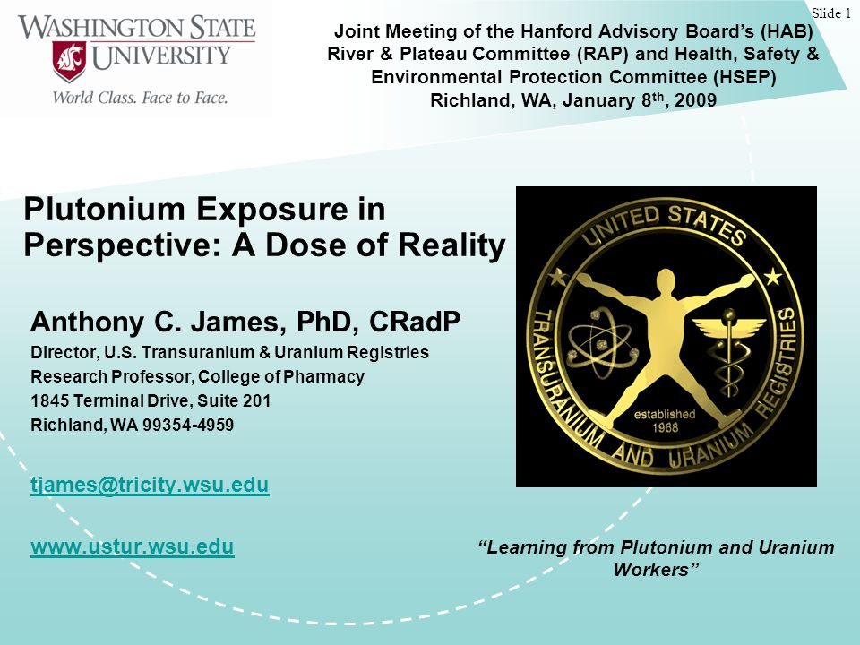 Slide 1 Plutonium Exposure in Perspective: A Dose of Reality Anthony C.