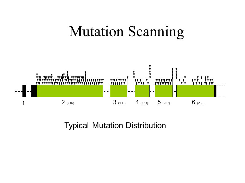 1 2 (716) 3 (133) 4 (133) 5 (207) 6 (263) Mutation Scanning Typical Mutation Distribution