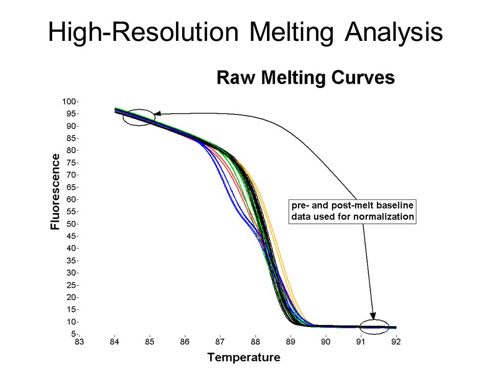High-Resolution Melting Analysis
