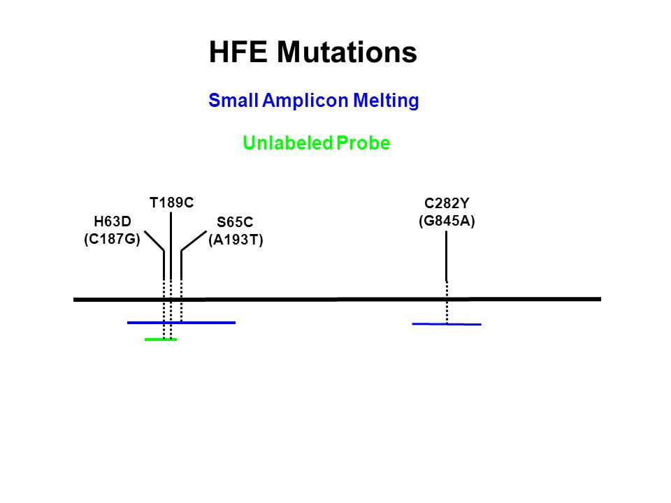 HFE Mutations Small Amplicon Melting H63D (C187G) T189C S65C (A193T) C282Y (G845A) Unlabeled Probe