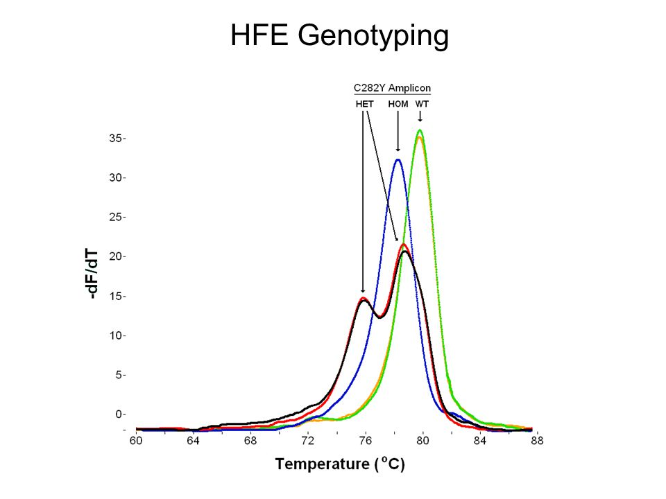 HFE Genotyping