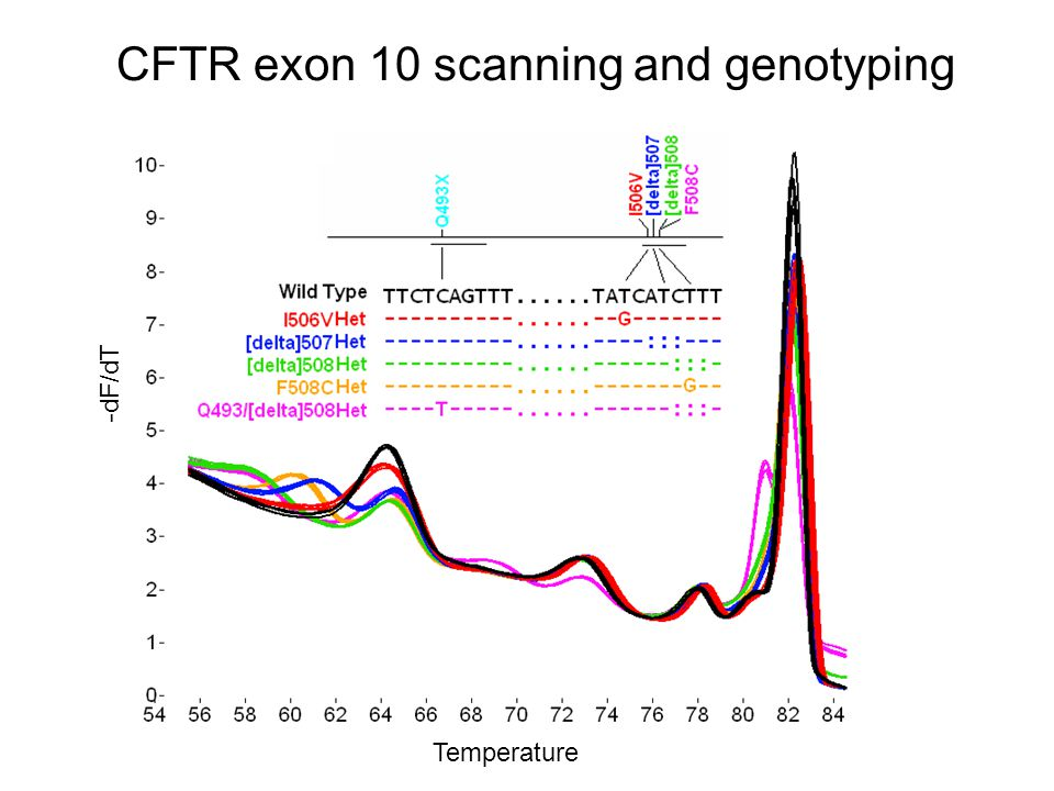 -dF/dT Temperature CFTR exon 10 scanning and genotyping