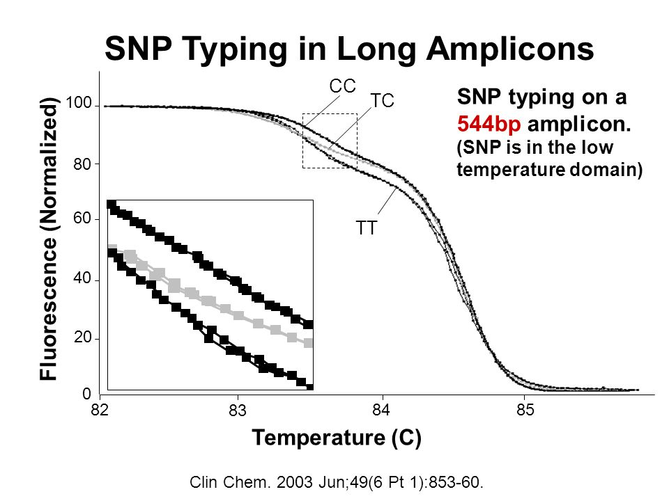 0 20 40 100 80 60 Fluorescence (Normalized) Temperature (C) 82 85 84 83 CC TT TC SNP typing on a 544bp amplicon.