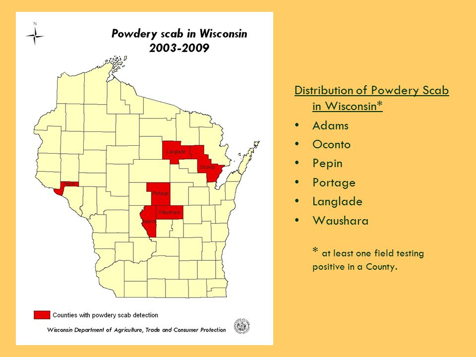 Department of Agriculture, Trade and Consumer Protection Distribution of Powdery Scab in Wisconsin* Adams Oconto Pepin Portage Langlade Waushara * at least one field testing positive in a County.