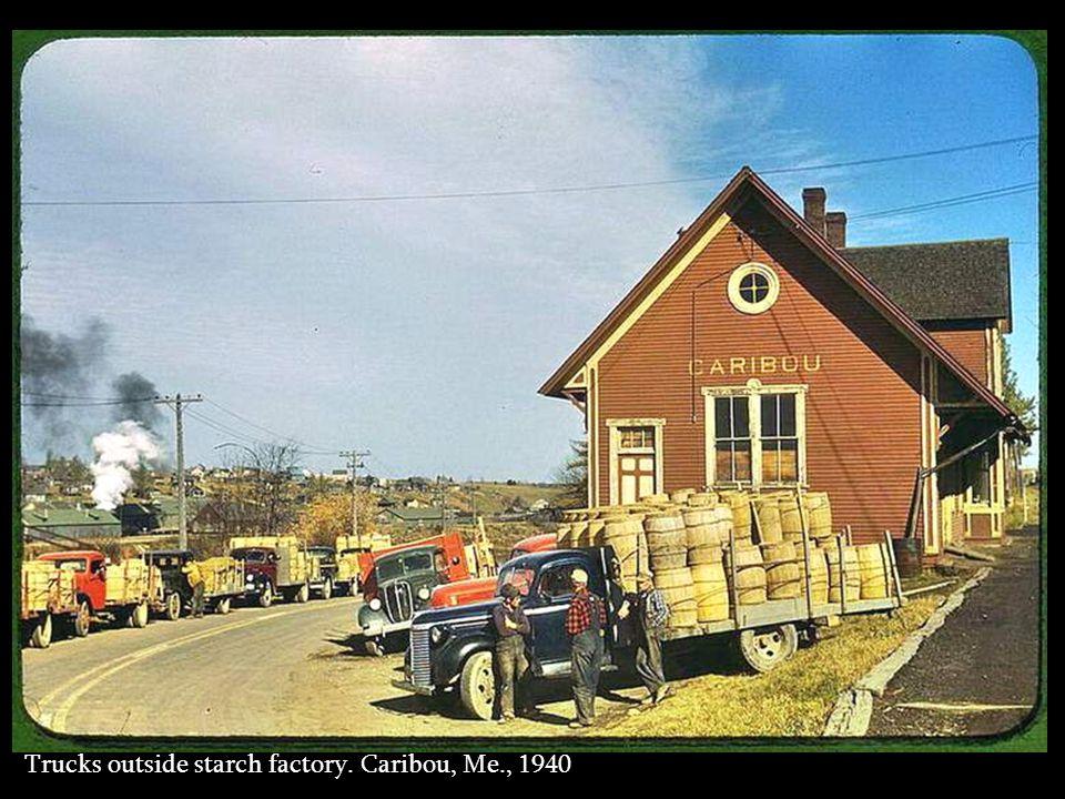 Gathering potatoes. Caribou, Maine, 1940