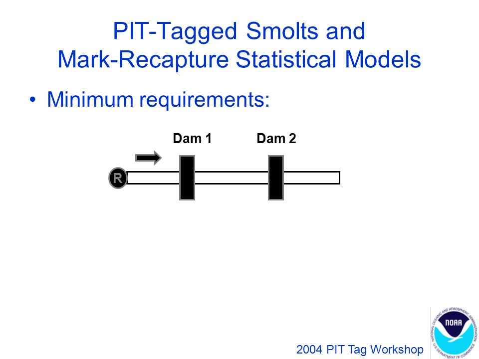 Parameter Estimates R Dam 1Dam 2 ** S P r = number of tagged smolts released a = number detected at Dam 1 g = number detected at both dams h = number detected at Dam 2 but not Dam 1 ^ 2004 PIT Tag Workshop