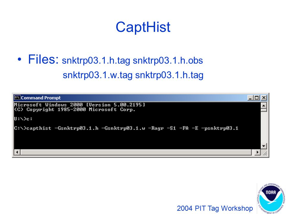 CaptHist Files: snktrp03.1.h.tag snktrp03.1.h.obs snktrp03.1.w.tag snktrp03.1.h.tag 2004 PIT Tag Workshop