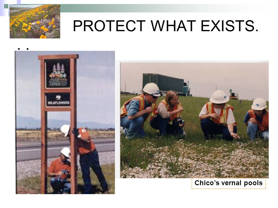 PROTECT WHAT EXISTS... Chico's vernal pools