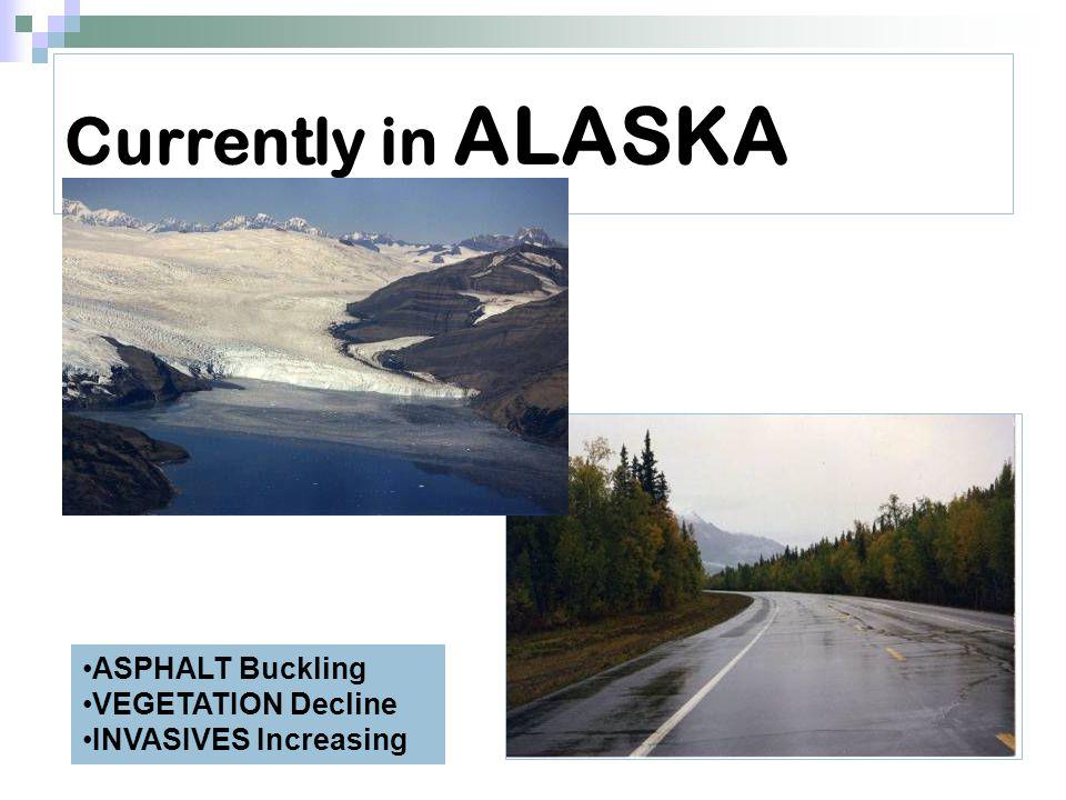 Currently in ALASKA ASPHALT Buckling VEGETATION Decline INVASIVES Increasing