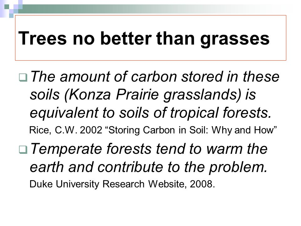 Trees no better than grasses  The amount of carbon stored in these soils (Konza Prairie grasslands) is equivalent to soils of tropical forests.