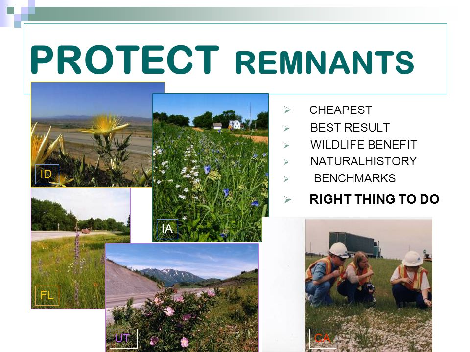 PROTECT REMNANTS  CHEAPEST  BEST RESULT  WILDLIFE BENEFIT  NATURALHISTORY  BENCHMARKS  RIGHT THING TO DO CAUT FL IA ID