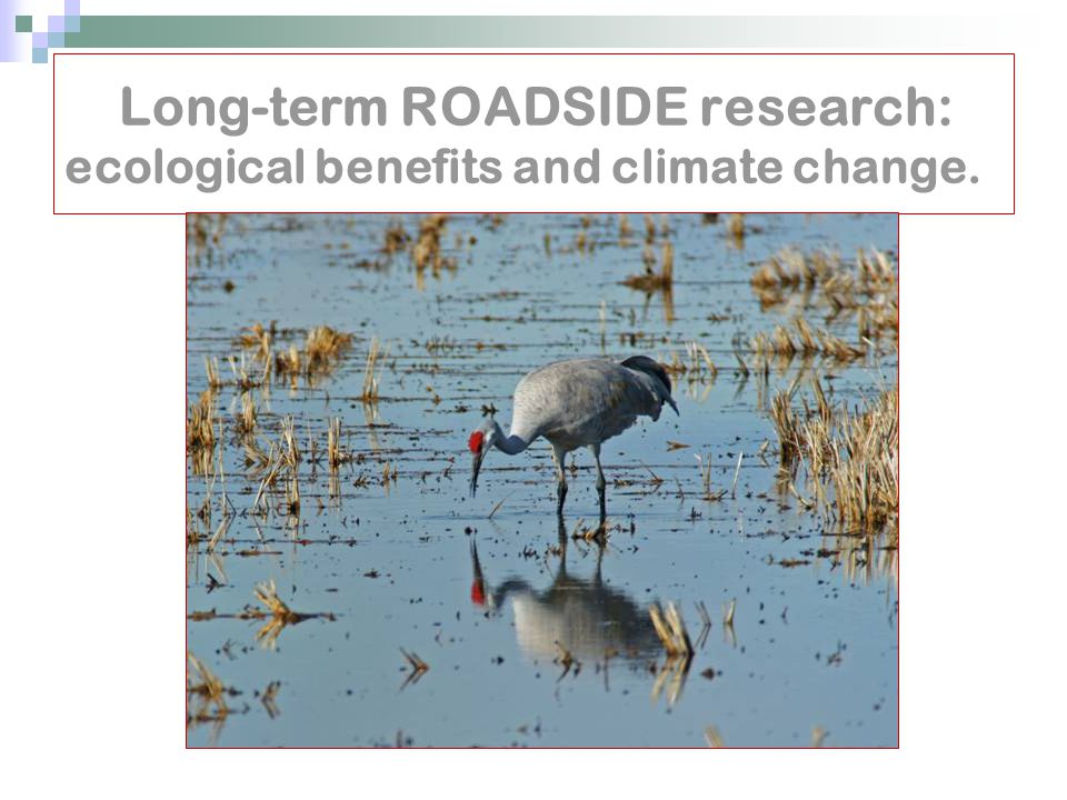 Long-term ROADSIDE research: ecological benefits and climate change.