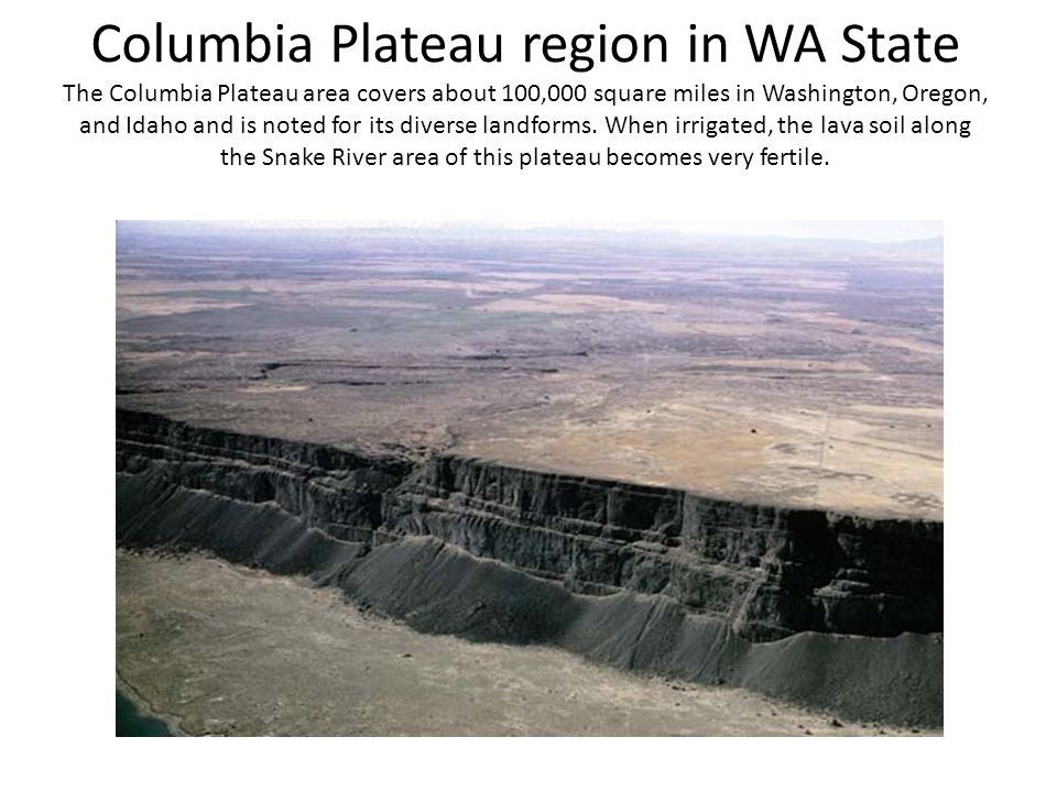Columbia Plateau region in WA State The Columbia Plateau area covers about 100,000 square miles in Washington, Oregon, and Idaho and is noted for its