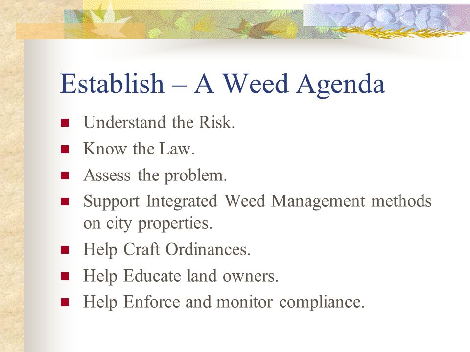 Establish – A Weed Agenda Understand the Risk. Know the Law.