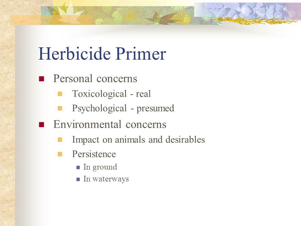 Herbicide Primer Personal concerns Toxicological - real Psychological - presumed Environmental concerns Impact on animals and desirables Persistence In ground In waterways