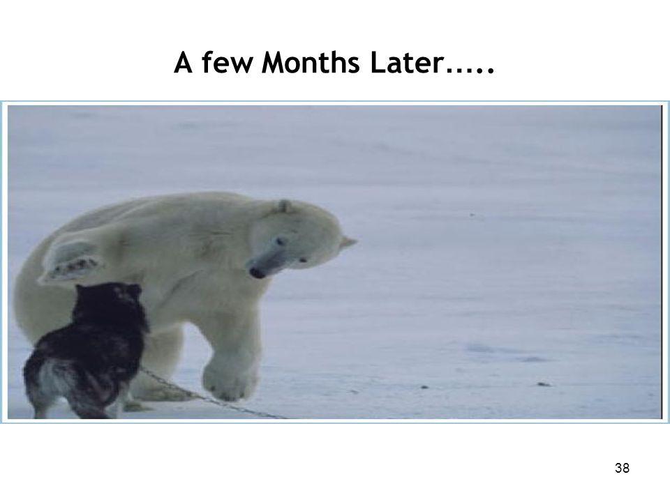 38 A few Months Later …..
