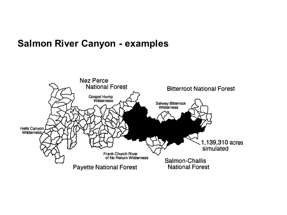 Salmon River Canyon - examples