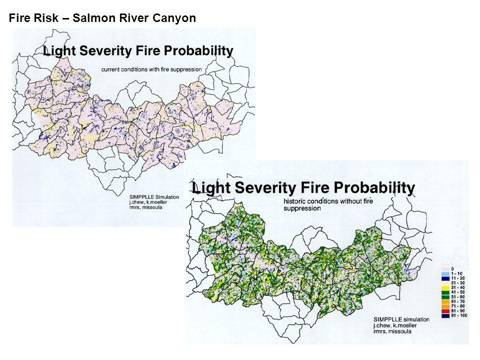 Fire Risk – Salmon River Canyon