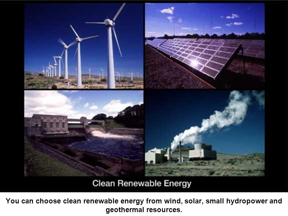 You can choose clean renewable energy from wind, solar, small hydropower and geothermal resources.