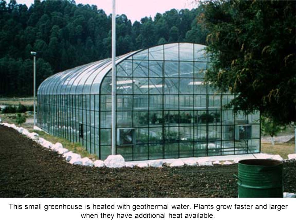 This small greenhouse is heated with geothermal water.