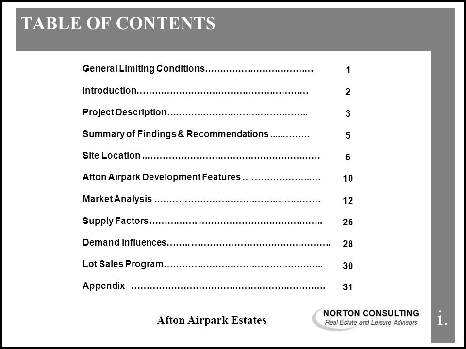 Afton Airpark Estates TABLE OF CONTENTS i.
