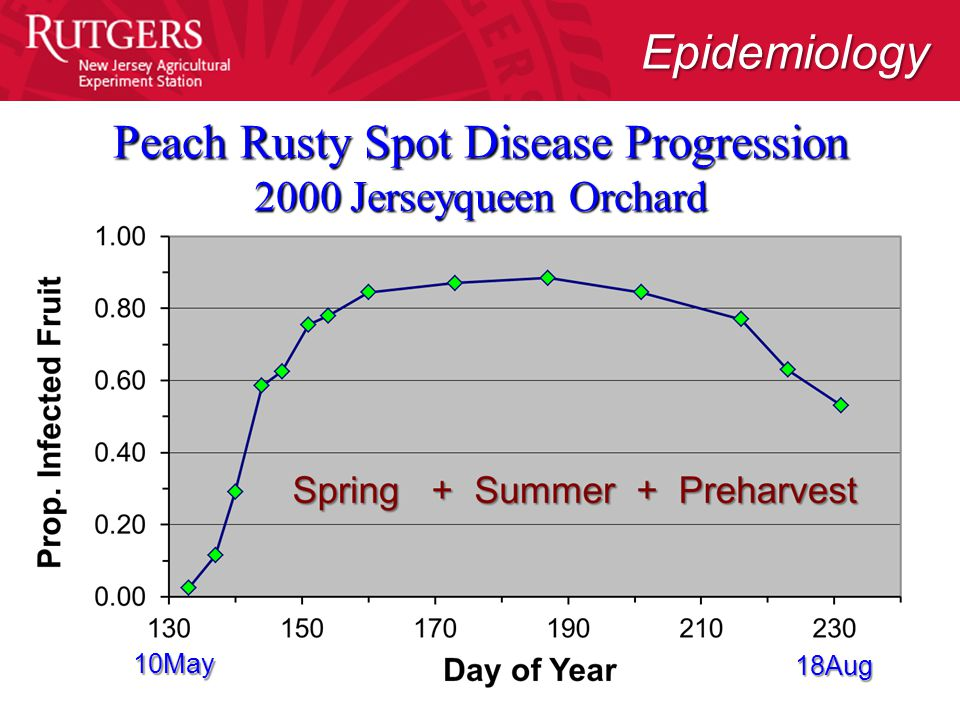 Peach Rusty Spot Disease Progression 2000 Jerseyqueen Orchard Epidemiology 10May 18Aug