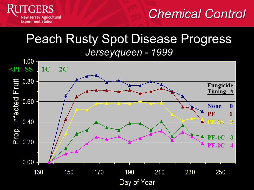 <PF SS 1C 2C Fungicide Timing # None 0 PF 1 PF, SS 2 PF-1C 3 PF-2C 4 Peach Rusty Spot Disease Progress Jerseyqueen - 1999 Chemical Control