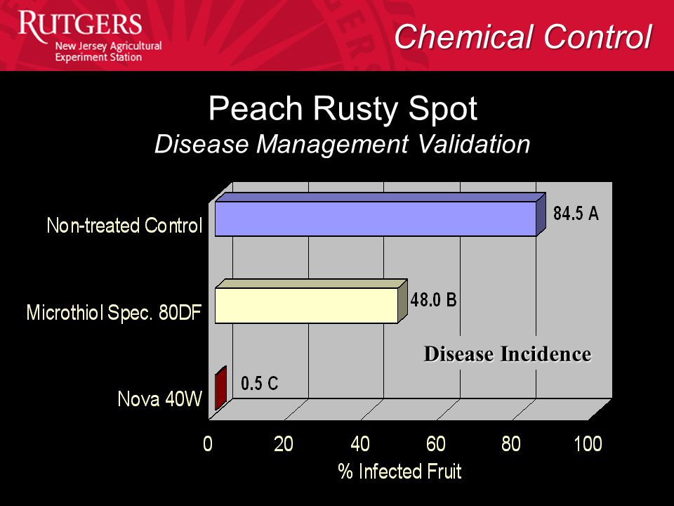 Peach Rusty Spot Disease Management Validation Disease Incidence Chemical Control