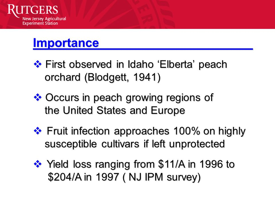 Importance  First observed in Idaho 'Elberta' peach orchard (Blodgett, 1941) orchard (Blodgett, 1941)  Occurs in peach growing regions of the United States and Europe the United States and Europe  Fruit infection approaches 100% on highly susceptible cultivars if left unprotected susceptible cultivars if left unprotected  Yield loss ranging from $11/A in 1996 to $204/A in 1997 ( NJ IPM survey) $204/A in 1997 ( NJ IPM survey)
