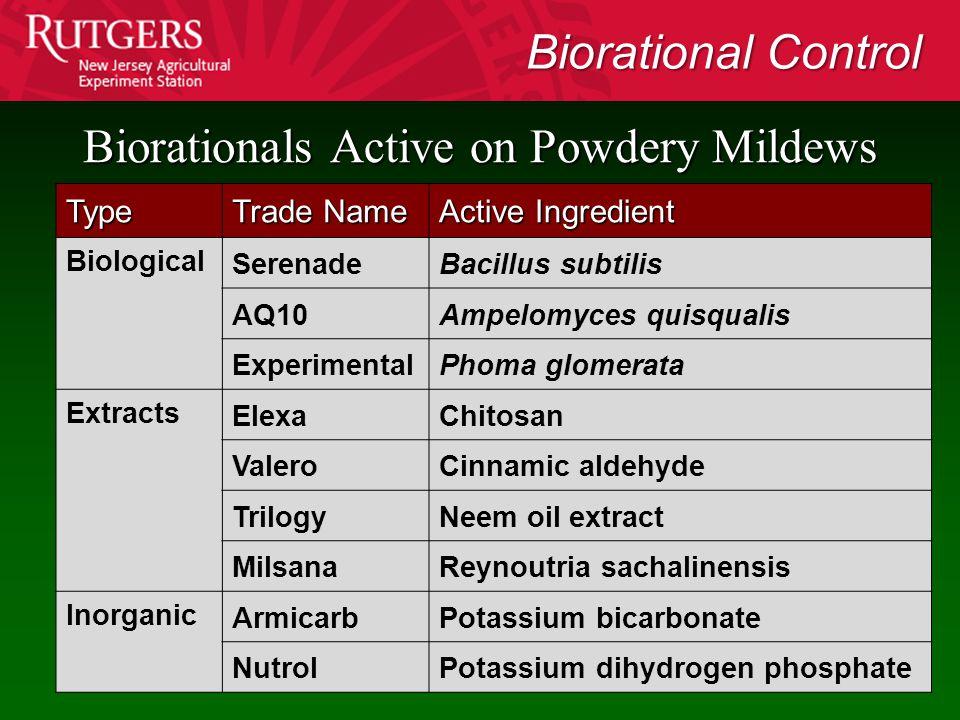 Type Trade Name Active Ingredient Biological SerenadeBacillus subtilis AQ10Ampelomyces quisqualis ExperimentalPhoma glomerata Extracts ElexaChitosan V